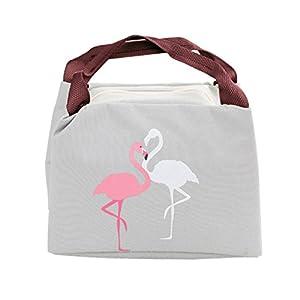 iSuperb Lunch-Taschen wasserdichte Kühltasche Mtagessen Tsche Isoliert Lunch Bag für Erwachsene, Kinder, Mädchen, Frauen 21x17x15 cm (Grau)