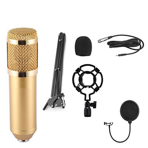 Huacat Bluetooth Lautsprecher Mobiles Singmikrofon Live Geräteset wandmontierbar Bluetooth eingebaute HiFi-Lautsprecher für Kinder, die Boombox mit Fernbedienung, FM-Radio USB Kopfhöreranschluss