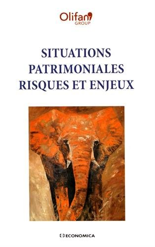 Situations patrimoniales : risques et enjeux par Olifan Group