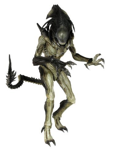 Sideshow Collectibles Hot Toys Movie Masterpiece Alien Vs. Predator: Requiem 16 Inch Model Figure Alien Hybrid [Predalien] by Hot Toys