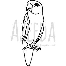 Suchergebnis Auf Amazon De Fur Papagei Vorlage