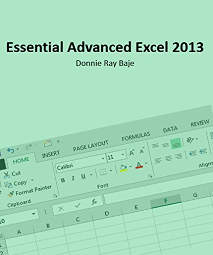 Essential MS Excel 2013 (Essential Microsoft Office Book 1) (English Edition)