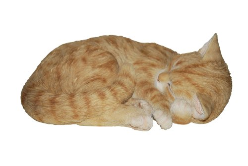 Vivid Arts Real Life Katze, schlafend, rot (Größe B)