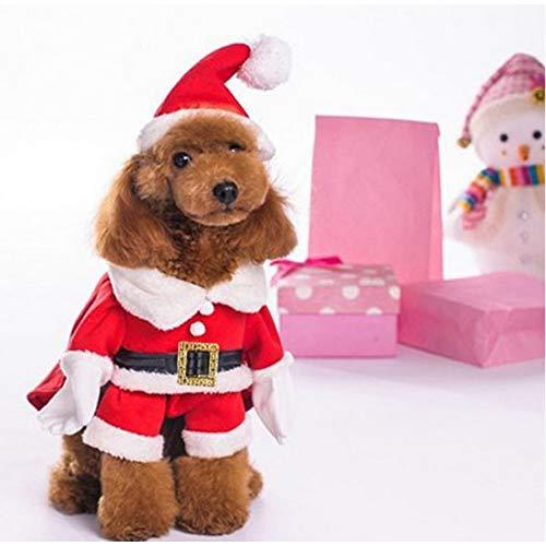 Kostüm Weihnachtsmann Ziel - DOGCATMM Weihnachtsmann-Entwurfs-Schoßhund-Mantelmit Hut verfolgt Kleidung durch Hundekleidung
