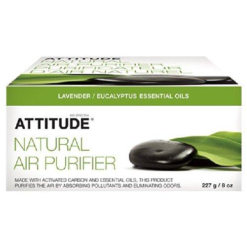 Preisvergleich Produktbild Attitude Natürliche Luftreiniger Eucalyptus & Lavender 227g