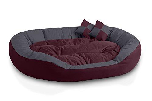 BedDog 4in1 Hundebett SABA, Wende-Hunde-Kissen oval-rund, großes Hundekörbchen, abwischbares Hundebett mit Rand, für drinnen, draußen, XXL, Cherry-Rock, Bordeaux-grau