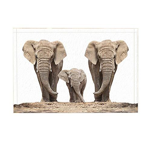 GzHQ Animales Salvajes Familia Elefantes Sabana Africana Fondo Blanco Antideslizante Alfombra Entrada...