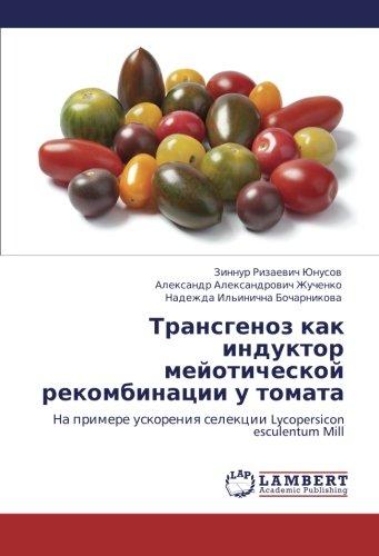 Transgenoz kak induktor meyoticheskoy rekombinatsii u tomata:  Na primere uskoreniya selektsii Lycopersicon esculentum Mill
