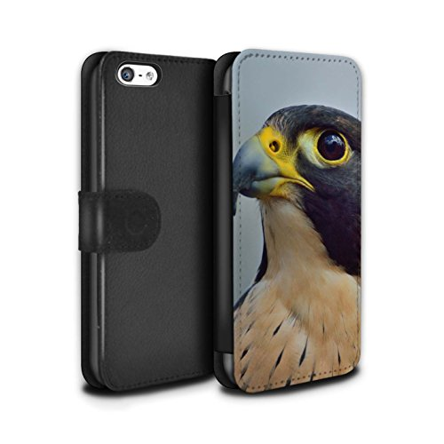 Stuff4 MR PU Leather Case/Cover/Wallet For Apple Iphone 5 C/Birds of Prey Falco Pellegrino (Falchi Leder)