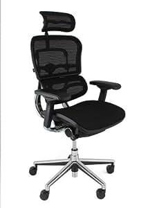 Ergohuman mesh chair with headrest