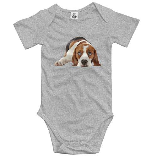 Klotr Unisex Baby Body Kurzarm Basset Hound Dog Newborn Bodysuits Baumwolle Strampler Outfit Set Basset-hound-fleece