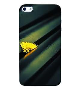 Fuson 3D Printed Flower Designer Back Case Cover for Apple iPhone 4 - D913