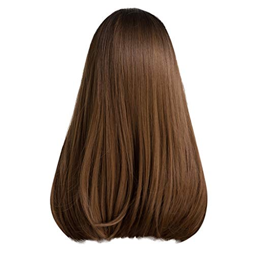 ER Wigs Cosplay Party Braunes Langes Glattes Haar Mit Farbverlauf Perücke ()