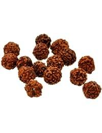 Mandala Crafts® Lote de 100Rudraksha semillas sueltas cuentas, Rudraksha cuentas, 8mm