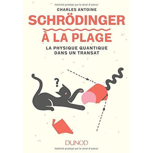 Schrödinger à la plage - La physique quantique dans un transat