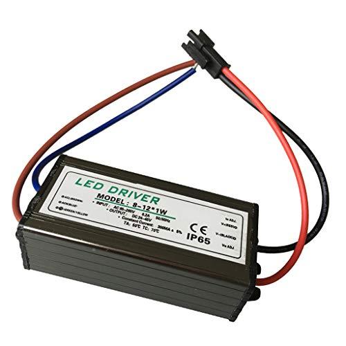 Almencla 8 12 String 10W Flutlicht Wandfluter Driver Downlight LED Netzteil -