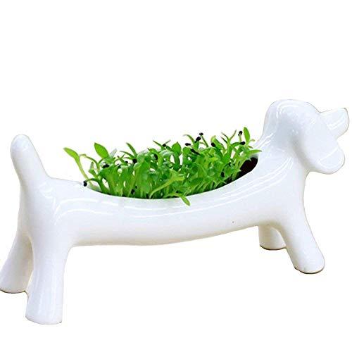 Weiß Keramik Tier Hund Flower grün Pflanzgefäß Ornaments Getopfte Sukkulente Micro Mini Desktop Landschaft Waschbecken Leuchter Halterungen Aschenbecher Dekoration -