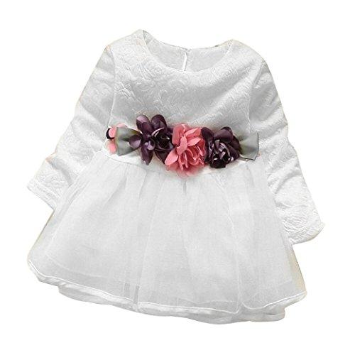 Stadt Party Katze Kostüme (Longra Baby Kinder Mädchen Langarm Prinzessin Blumen Kleid Kostüm Tutu Kleid Karneval Party Kleid Baby Outfits Kleidung(0-3Jahre) (90CM 18Monate,)