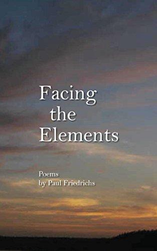 Facing the Elements por Paul Edward Friedrichs