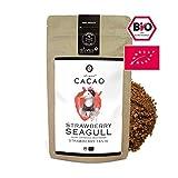 alveus® Cacao BIO Seagull - Kakaomischung mit Kakaopulver*, Macawurzel*, natürliches Aroma, Erdbeer Pulver* (1%). *Aus kontrolliert biologischem Anbau, 125g Tüte