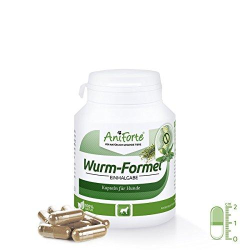 AniForte Wurm-Formel 100 Kapseln- Naturprodukt für Hunde Test