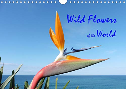Wild Flowers of the World (Wall Calendar 2020 DIN A4 Landscape): A collection of vibrant images portraying the  diversity of international botany (Monthly calendar, 14 pages ) (Calvendo Nature)