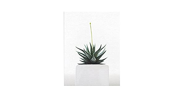 ChezMax Wall Art on Canvas Print Artwork Pictures for Home Decor Green Tropical Plants Cactus 9.8 X 11.8