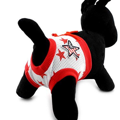 rverwendbar Fünf Star Small Pet Puppy Hund Sanitär Windeln Hose Baumwolle Soft Unterwäsche kurz still physiologischen täglichen Gebrauch ()