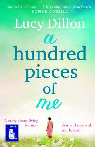 A Hundred Pieces of Me (Large Print Edition)
