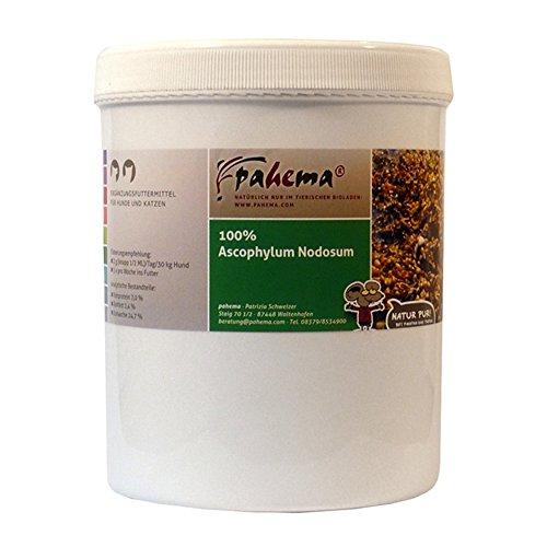 pahema Ascophyllum Nodosum - Seealgenmehl für Hunde - 100% Natur (1000 g) -