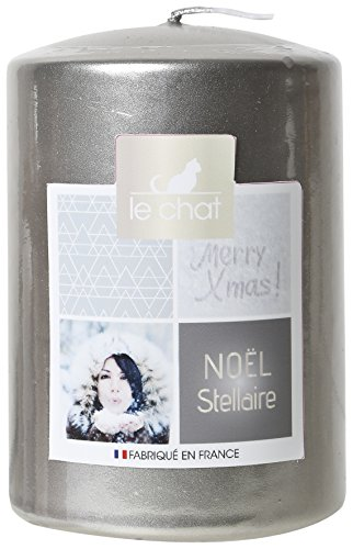LE CHAT Christmas chatting 1179227 Estelar Cylindrical Candle Large Model - Silver