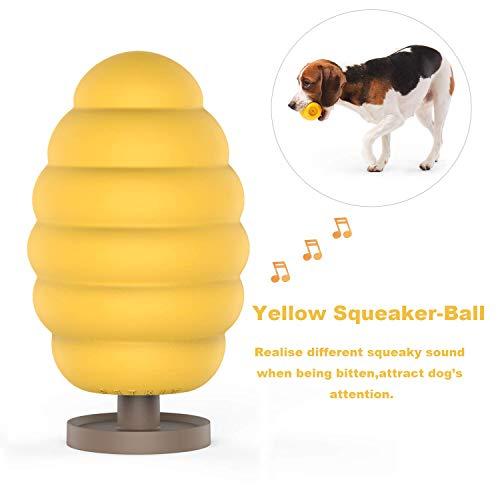 PETKIT Hund Quietschspielzeug mit 6 Stimme, Naturkauschuk Hundespielzeug Kugel Robust für Hunde und Welpen, Fashion und Leicht zu Aufbewahrung -