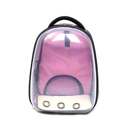 Haustier Reisetasche Heimtierbedarf Volle transparente Umhängetasche Tragbare Raumtierkabine Atmungsaktiver Katzenkäfig Hund Handtasche Umhängetasche Rucksack (Farbe : Silber, größe : 42 * 32cm) -