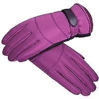 HEJIANGTAO Bajo Coton Hiver Chaud Moto Impermeables Froid et Velours épaississement gants de ski en Plein Air Hommes, Femmes Violet