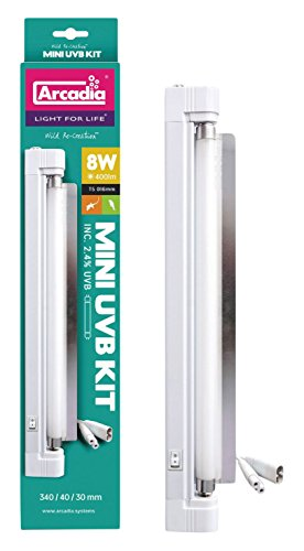 Arcadia Mini UVB Kit – 8W 400lm – 340 x 40 x 30mm – Includes 2.4% UVB Lamp