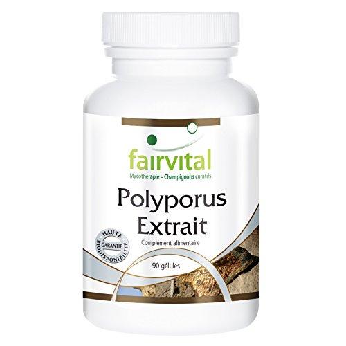 Polyporus - Extrait 500mg dont 30% de polysaccharides (150mg), 90 gélules végétariennes