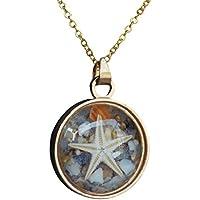 Estrella de mar Cáscara Natural Arena de mar Playa Brillan en la Oscuridad Transparente Medallón Flotante Colgante 18k Chapado en Oro Cadena Collares