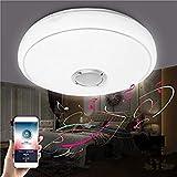 SLB Works 24W Modern Led Ceiling Lights Bluetooth Music Speaker Lamp for Bedroom