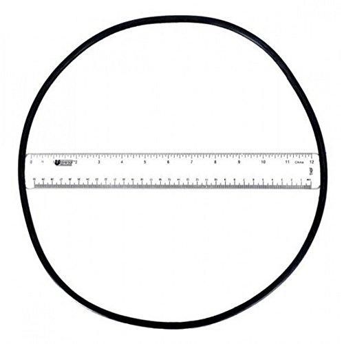 Astral 4404210302 O-Ring für Filter-Behälter - Astral Filter