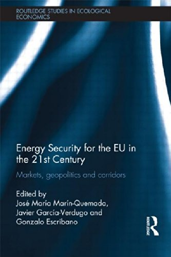Energy Security for the EU in the 21st Century: Markets, Geopolitics and Corridors (Routledge Studies in Ecological Economics) (2011-11-17)