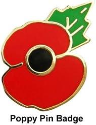 England Pin's avec motif coquelicot pour le jour du Souvenir