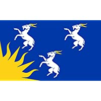 magFlags Bandiera Large Merioneth | Welsh county of Merioneth/Meirionnydd derived from the seal of the former county council 90x150cm - Seal Staffa