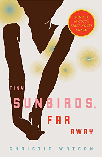 Book cover for Tiny Sunbirds, Far Away