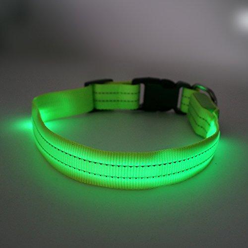 MASBRILL cane LED collare Lampeggiante collare con fibbia di sicurezza del cane di notte fino LED collare per Pet Dog Cat con 2 strisce riflettenti (verde)