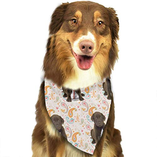 deyhfef Puppy Chocolate Lab Kisses Dog Bandanas - Washable and Reversible Triangle Cotton Dog Bibs Scarf Assortment Suitable for Puppy Small and Medium - Lab Puppy Kostüm