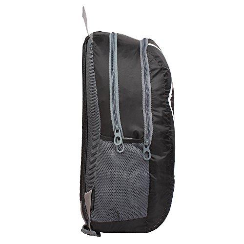Sassie Polyester 22L Black & Gray Smart School Bag (SSN-1033)(45 x 33 x 15 CM)