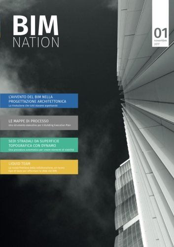 BIM Nation: 1: Volume 1