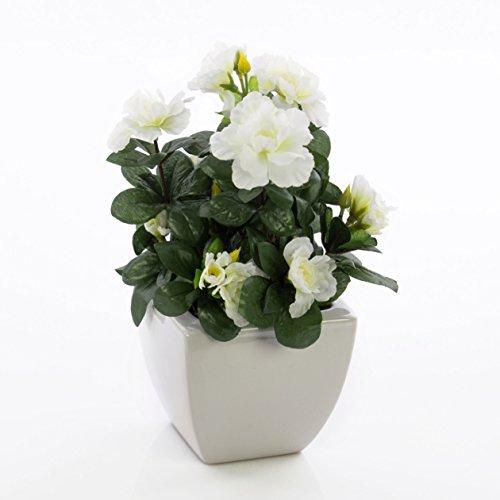 artplants Set 2 x Azaleen TABITA, weiße Blüten, grüne Blätter, in Keramiktöpfen, 20cm – Kunstblumen/Dekoration Kunstpflanzen