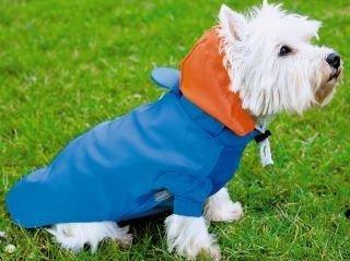 Hunde Regenjacke m. Kapuze, Rückenlänge 46-52cm, Gr. L Polyester, beschichtet