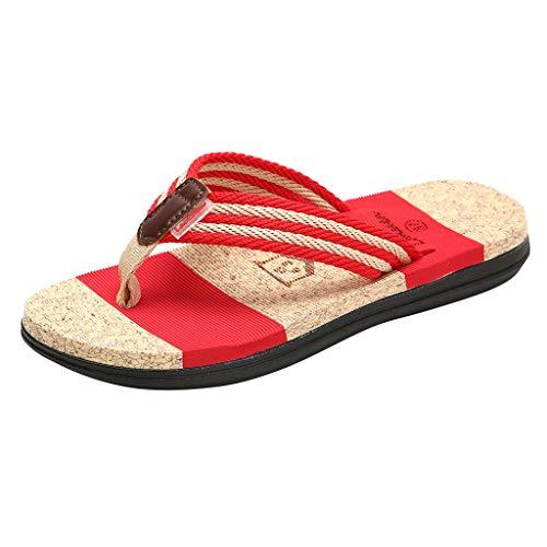 Zehentrenner Sandalen Damen Flach Sandaletten Sommer Hausschuhe Schuhe Pantoletten Damenschuhe Schlappen von Bluelucon
